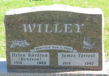 WILLEY, JAMES FORREST - Union County, South Dakota | JAMES FORREST WILLEY - South Dakota Gravestone Photos