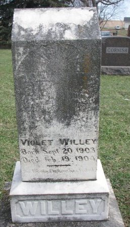 WILLEY, VIOLET - Union County, South Dakota | VIOLET WILLEY - South Dakota Gravestone Photos