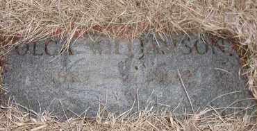 WILLIAMSON, OLGA - Union County, South Dakota   OLGA WILLIAMSON - South Dakota Gravestone Photos