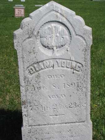 YOUNG, DIANA - Union County, South Dakota   DIANA YOUNG - South Dakota Gravestone Photos