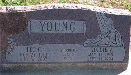 YOUNG, LEO C. - Union County, South Dakota | LEO C. YOUNG - South Dakota Gravestone Photos