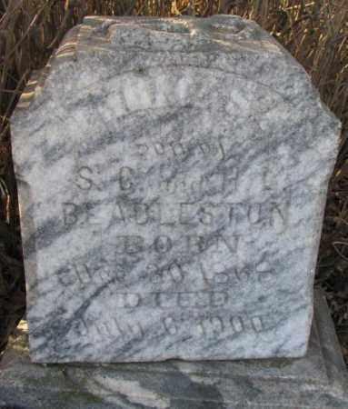 BEADLESTON, THOMAS G. - Yankton County, South Dakota   THOMAS G. BEADLESTON - South Dakota Gravestone Photos