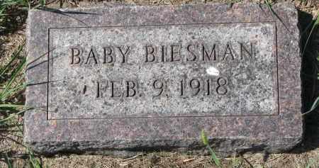 BIESMAN, BABY - Yankton County, South Dakota | BABY BIESMAN - South Dakota Gravestone Photos