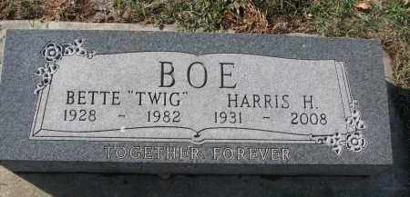 BOE, HARRIS H. - Yankton County, South Dakota | HARRIS H. BOE - South Dakota Gravestone Photos