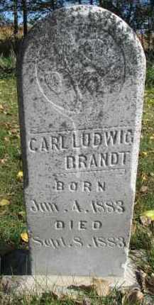 BRANDT, CARL LUDWIG - Yankton County, South Dakota | CARL LUDWIG BRANDT - South Dakota Gravestone Photos