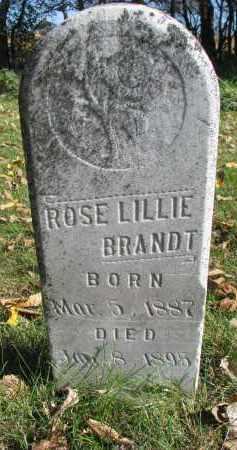 BRANDT, ROSE LILLIE - Yankton County, South Dakota | ROSE LILLIE BRANDT - South Dakota Gravestone Photos
