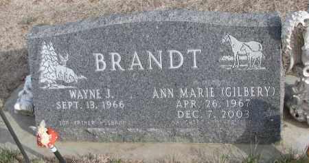 BRANDT, ANN MARIE - Yankton County, South Dakota | ANN MARIE BRANDT - South Dakota Gravestone Photos