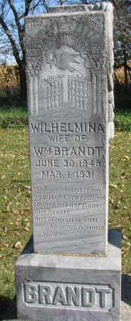 BRANDT, WILHELMINA - Yankton County, South Dakota   WILHELMINA BRANDT - South Dakota Gravestone Photos