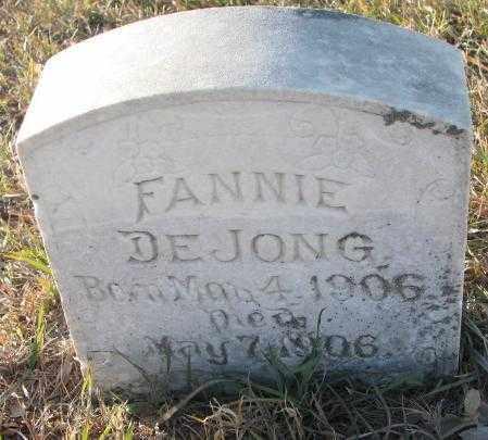 DEJONG, FANNIE - Yankton County, South Dakota | FANNIE DEJONG - South Dakota Gravestone Photos