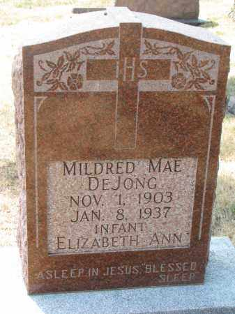 DEJONG, ELIZABETH ANN - Yankton County, South Dakota   ELIZABETH ANN DEJONG - South Dakota Gravestone Photos