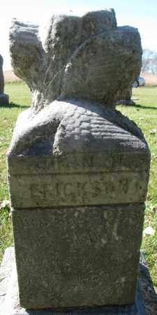 ERICKSON, JOHN - Yankton County, South Dakota   JOHN ERICKSON - South Dakota Gravestone Photos
