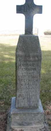 GLEICH, ANTONIE - Yankton County, South Dakota | ANTONIE GLEICH - South Dakota Gravestone Photos