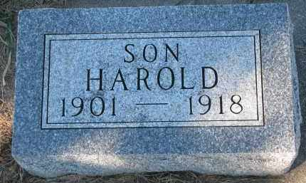 GUSTAD, HAROLD - Yankton County, South Dakota   HAROLD GUSTAD - South Dakota Gravestone Photos