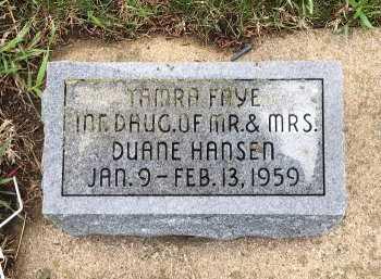 HANSEN, TAMRA FAYE - Yankton County, South Dakota | TAMRA FAYE HANSEN - South Dakota Gravestone Photos