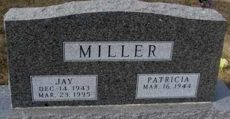 MILLER, PATRICIA - Yankton County, South Dakota | PATRICIA MILLER - South Dakota Gravestone Photos