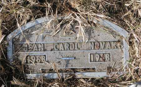 NOVAK, JEAN CAROL - Yankton County, South Dakota | JEAN CAROL NOVAK - South Dakota Gravestone Photos