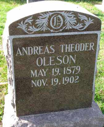 OLESON, ANDREAS THEODER - Yankton County, South Dakota | ANDREAS THEODER OLESON - South Dakota Gravestone Photos