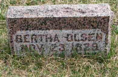 OLSEN, BERTHA - Yankton County, South Dakota | BERTHA OLSEN - South Dakota Gravestone Photos