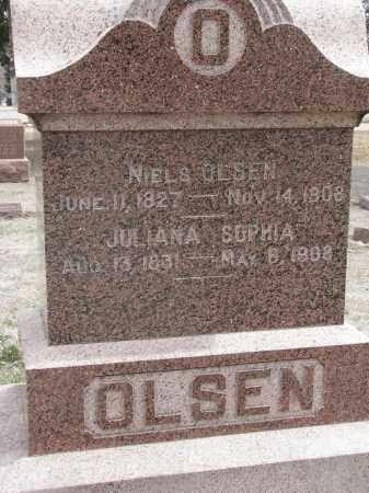 OLSEN, JULIANNA SOPHIA - Yankton County, South Dakota | JULIANNA SOPHIA OLSEN - South Dakota Gravestone Photos