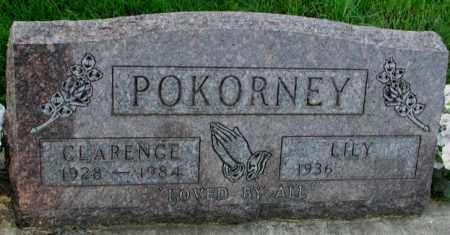 POKORNEY, LILY - Yankton County, South Dakota | LILY POKORNEY - South Dakota Gravestone Photos