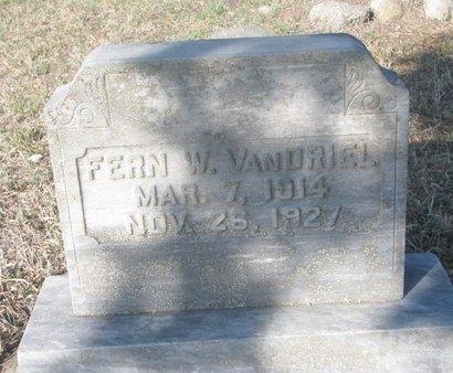 VANDRIEL, FERN W. - Yankton County, South Dakota | FERN W. VANDRIEL - South Dakota Gravestone Photos