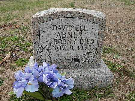 ABNER, DAVID LEE - Anderson County, Tennessee | DAVID LEE ABNER - Tennessee Gravestone Photos