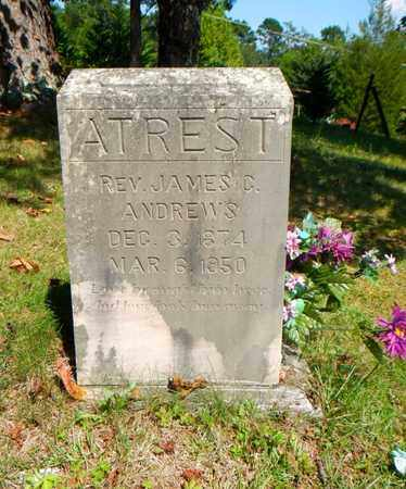 ANDREWS, JAMES C (REVEREND) - Anderson County, Tennessee | JAMES C (REVEREND) ANDREWS - Tennessee Gravestone Photos