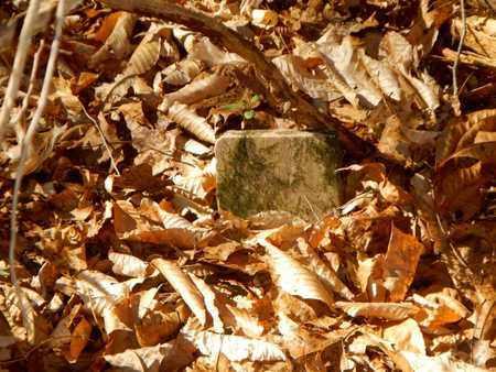 COOPER, JOHN L - Anderson County, Tennessee | JOHN L COOPER - Tennessee Gravestone Photos