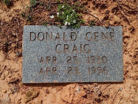 CRAIG, DONALD GENE - Anderson County, Tennessee | DONALD GENE CRAIG - Tennessee Gravestone Photos