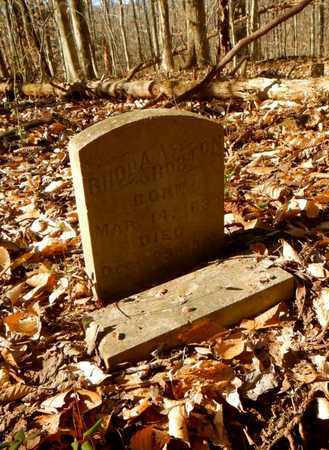 HORTON, RHODA A - Anderson County, Tennessee | RHODA A HORTON - Tennessee Gravestone Photos