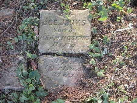 HOSKINS, JOE JENKS - Anderson County, Tennessee | JOE JENKS HOSKINS - Tennessee Gravestone Photos