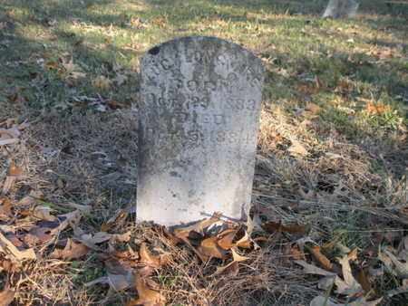 LONGMIRE, LUCY - Anderson County, Tennessee | LUCY LONGMIRE - Tennessee Gravestone Photos