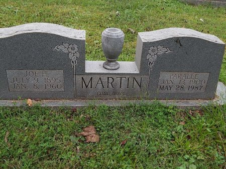MARTIN, PARALEE - Anderson County, Tennessee | PARALEE MARTIN - Tennessee Gravestone Photos