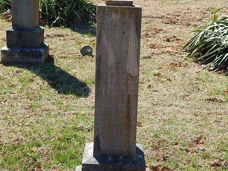 MARTIN, L E - Anderson County, Tennessee   L E MARTIN - Tennessee Gravestone Photos
