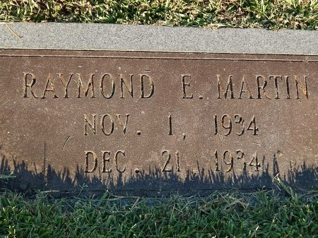 MARTIN, RAYMOND E - Anderson County, Tennessee | RAYMOND E MARTIN - Tennessee Gravestone Photos