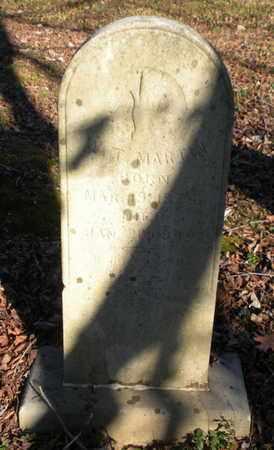MARTIN, W T - Anderson County, Tennessee | W T MARTIN - Tennessee Gravestone Photos