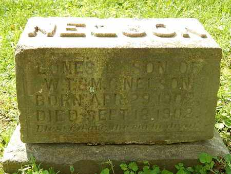 NELSON, LONES L - Anderson County, Tennessee | LONES L NELSON - Tennessee Gravestone Photos