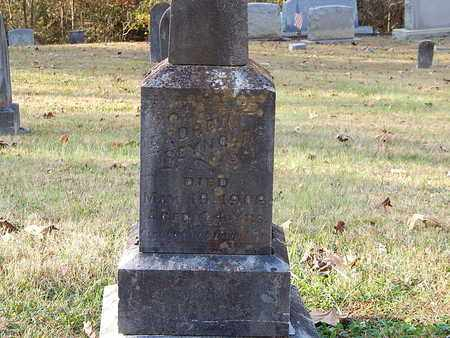REYNOLDS, ANDREW - Anderson County, Tennessee | ANDREW REYNOLDS - Tennessee Gravestone Photos