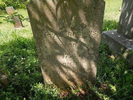 MCKAMEY ROBBINS, MARY A - Anderson County, Tennessee | MARY A MCKAMEY ROBBINS - Tennessee Gravestone Photos