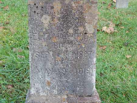 WOODS, ELIZA - Anderson County, Tennessee | ELIZA WOODS - Tennessee Gravestone Photos