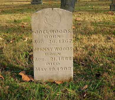 WOODS, JOHNNY - Anderson County, Tennessee | JOHNNY WOODS - Tennessee Gravestone Photos
