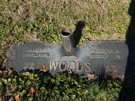 WOODS, JAMES E - Anderson County, Tennessee | JAMES E WOODS - Tennessee Gravestone Photos