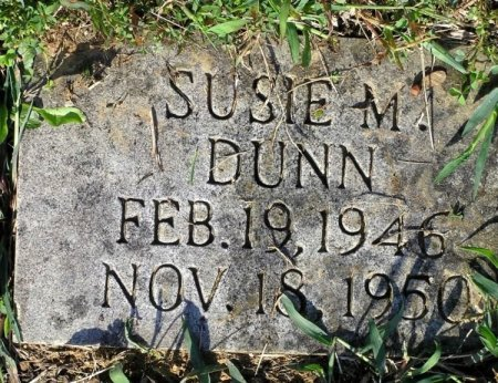 DUNN, SUSIE M. - Bedford County, Tennessee | SUSIE M. DUNN - Tennessee Gravestone Photos