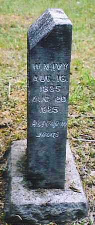IVY, W. N. - Bedford County, Tennessee | W. N. IVY - Tennessee Gravestone Photos