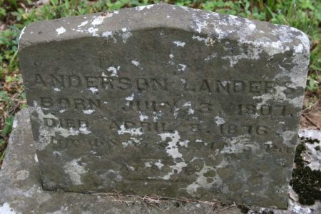 LANDERS, ANDERSON - Bedford County, Tennessee | ANDERSON LANDERS - Tennessee Gravestone Photos