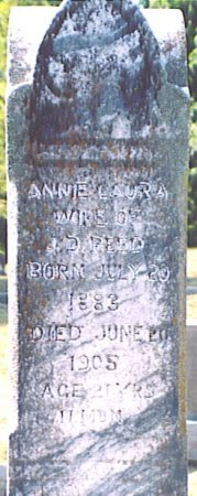 REED, ANNIE LAURA - Bedford County, Tennessee | ANNIE LAURA REED - Tennessee Gravestone Photos