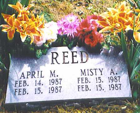 REED, MISTY A. - Bedford County, Tennessee   MISTY A. REED - Tennessee Gravestone Photos