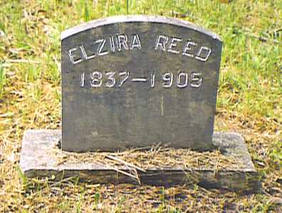 REED, ELZIRA - Bedford County, Tennessee | ELZIRA REED - Tennessee Gravestone Photos
