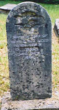 REED, JOHN A. - Bedford County, Tennessee | JOHN A. REED - Tennessee Gravestone Photos