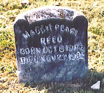 REED, MAGGIE PEARL - Bedford County, Tennessee | MAGGIE PEARL REED - Tennessee Gravestone Photos